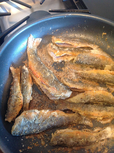 fried.trout